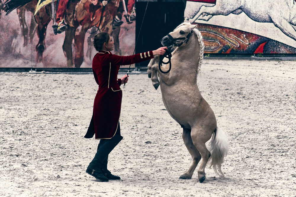 woman performing with rearing horse