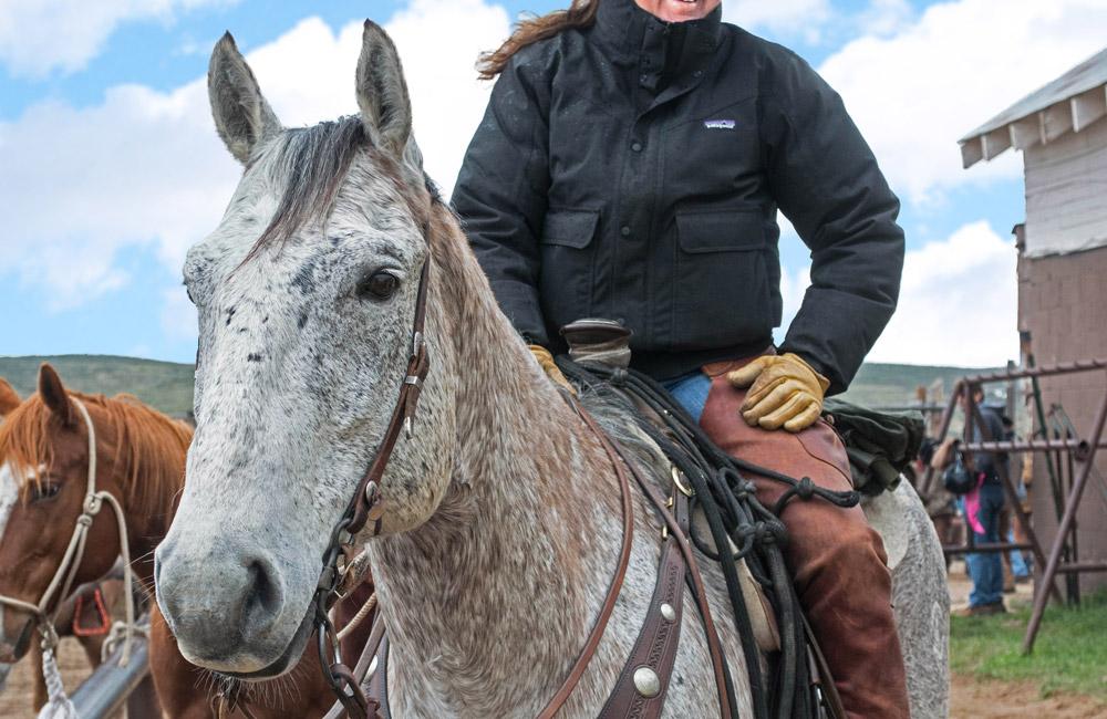 woman riding Colorado Ranger Horse