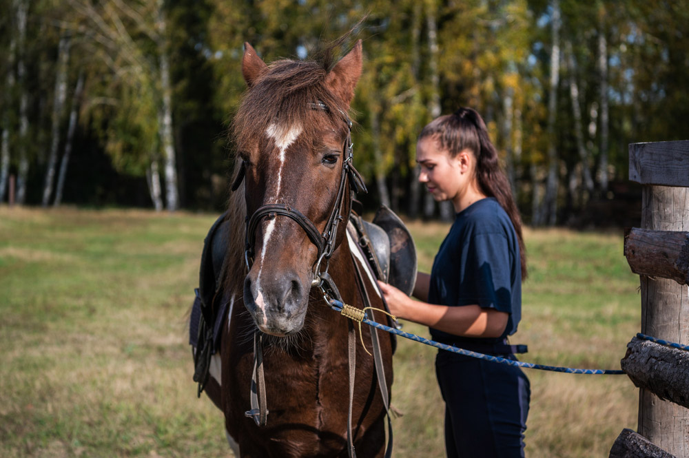 woman tacking up horse with saddle