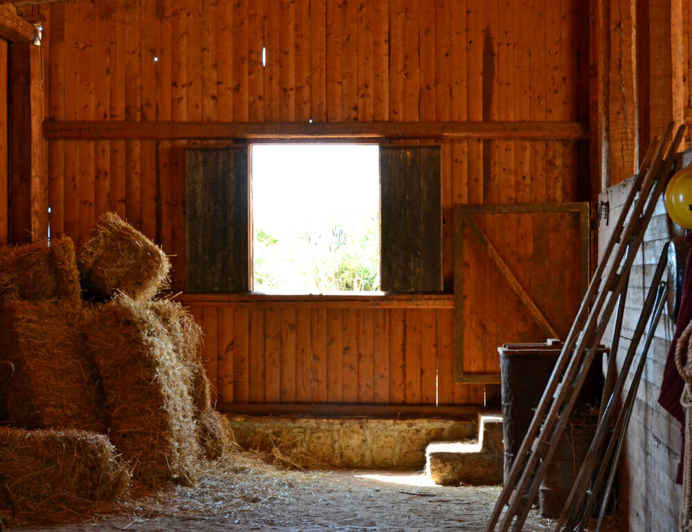 wooden horse barn with hay inside